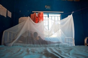 Bed net, Photo by Gates Foundation on Flickr, Creative Commons license
